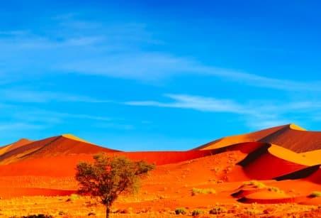 Premier pas en Namibie, des dunes au parc Etosha