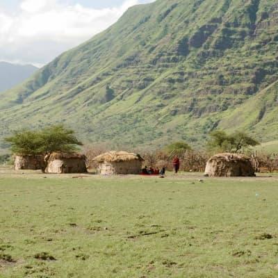 Visite du village de la tribu Pokot