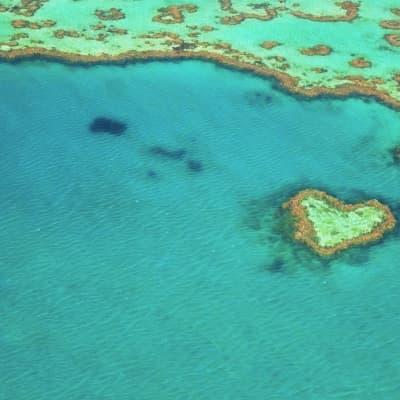 La Grande Barrière en hydravion