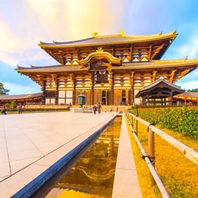 Visite guidée de Kyoto et Nara toute la journée