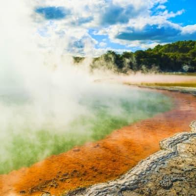 Géothermie et sources chaudes à Rotorua