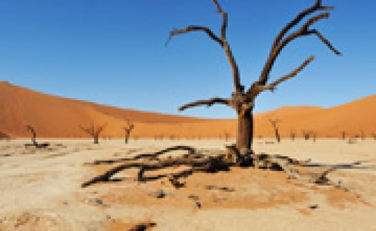 Incroyable survol en montgolfière des dunes de Sossusvlei