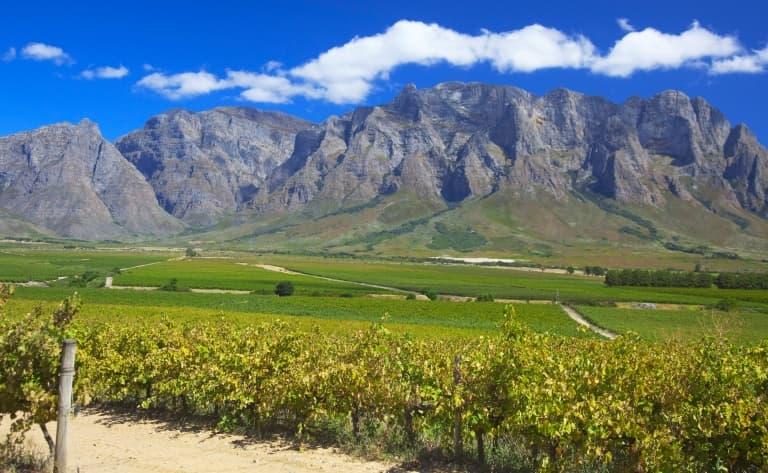 Des vignobles de la région du Cap aux grands espaces du Mpumalanga
