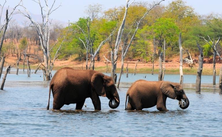 Au cœur du Zimbabwe