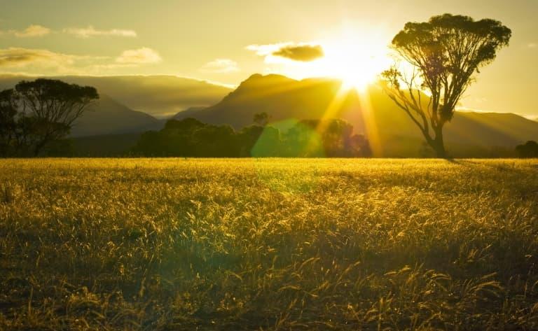 Coucher de soleil sur Uluru et dîner sous les étoiles