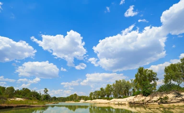 L'oasis de Litchfield National Park