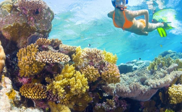 Exploration et snorkeling à Isla del Cano