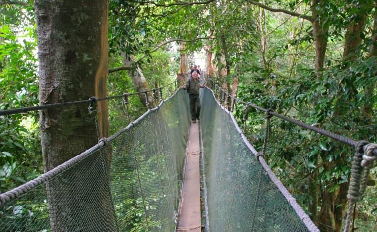 Ponts supendus d'Arenal