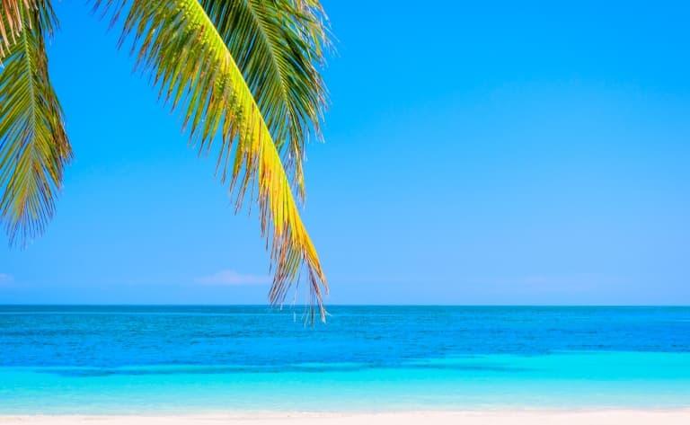 Une belle plage et des sites de plongée intéressants…