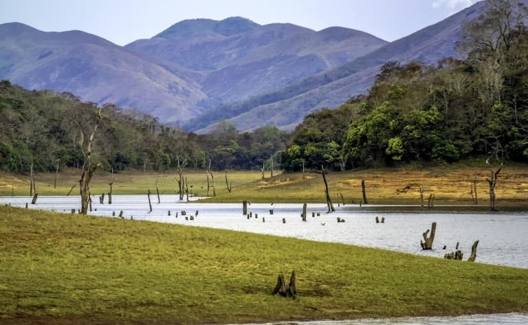 Le Parc National de Periyar