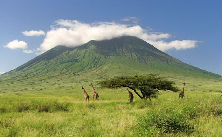 A la découverte d'Amboseli