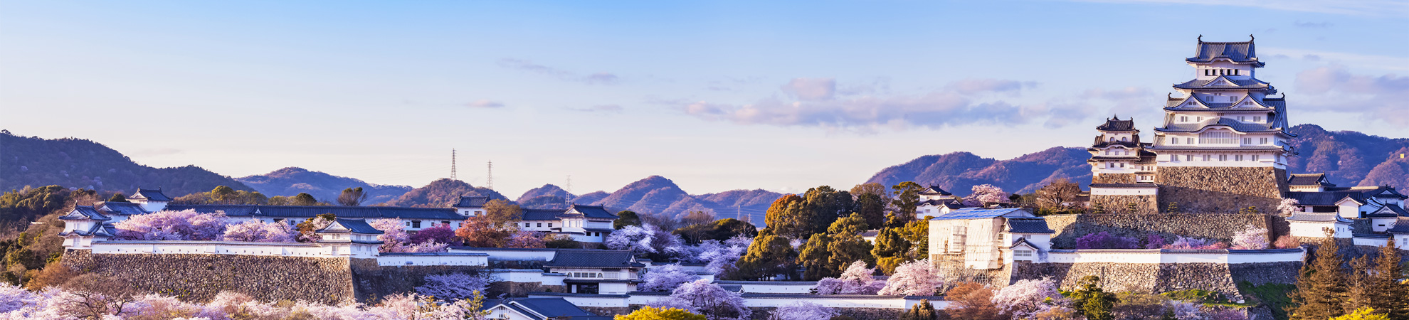 Voyage organisé japon